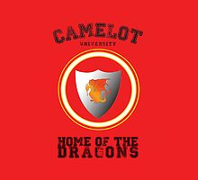 Camelot University iPhone Case by alpacastiel