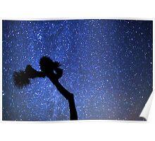 Sea of Stars Galaxy Over Joshua Tree Poster