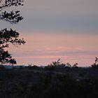 Kilauea Overlook Sunrise by Loisb