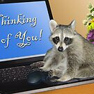 Thinking of You Raccoon by jkartlife