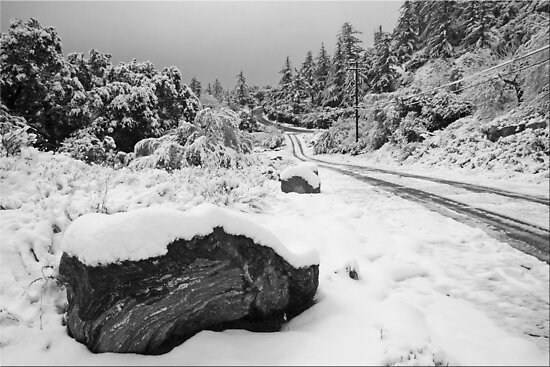 Snow Day In SoCal by Chet  King