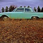 1961 Ford by Ralf372