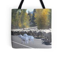 "Whadda ya mean you want to go back…..can't you read the sign????  It says 'No Ewe Turn"" ! Tote Bag"