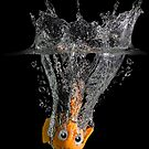 Falling Nemo by Patricia Jacobs CPAGB LRPS BPE3