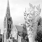 Christchurch Cathedral - Snowy Stars by Heike Richter