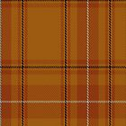 00101 Australia District Tartan Fabric Print Iphone Case by Detnecs2013