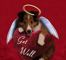 Get Well Sheltie Puppy by jkartlife