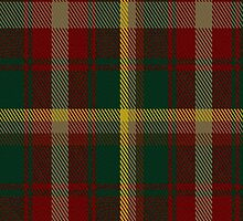 00109 Maple Leaf District Tartan Fabric Print Iphone Case by Detnecs2013