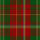 00122 New Brunswick District Tartan Fabric Print Iphone Case by Detnecs2013