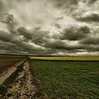 A Stormy Path by Stephen Cullum