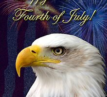 Fourth Of July Eagle by jkartlife