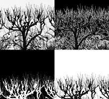 Barren Trees by Tamarra