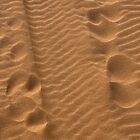 Tracks in the Sand by Karen  Betts