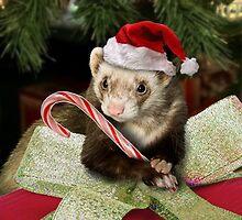 Christmas Ferret by jkartlife