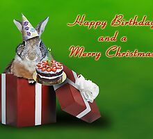 Birthday And Christmas Bunny Rabbit by jkartlife