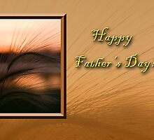 Father's Day Grass Sunset by jkartlife