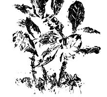 Ink Monoprint Tropical Plants by RedPine