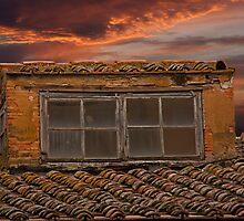 Terra Cotta Tiles by phil decocco