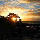 island sunrise  by thehylian