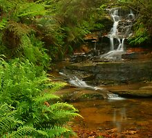 Mini Cascades at Leura by Michael Matthews