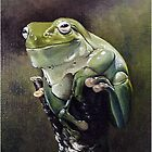 Green Frog by ZiyaEris