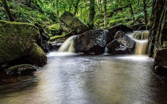 Burbage Brook by John Dunbar