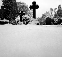 A Winters Grave by WillBov
