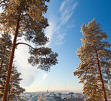 City horizon on a cloudless winter day by Kristian Tuhkanen