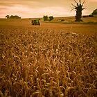The Art of Farming,Horsecroft Farm,Bury St Edmunds by Suffolk Photography