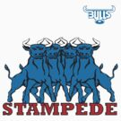 BLUE BULLS  STAMPEDE RUGBY by JAYSA2UK