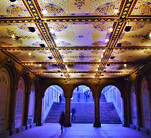 Milton Tiles at Bethesda Terrace by Mistral Hill  Photography