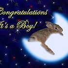 Congratulations It's A Boy Bunny Rabbit by jkartlife