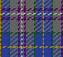 00199 Taobh Dhi Deeside Plaid District Tartan Fabric Print Iphone Case by Detnecs2013