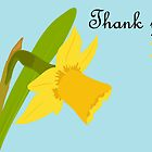 Thank you / Single Daffodil by Jacqueline Turton