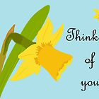 Thinking of you / Single Daffodil by Jacqueline Turton