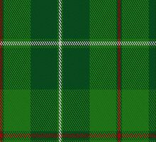 00211 Galloway Hunting District Tartan Fabric Print Iphone Case by Detnecs2013