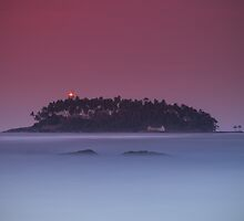 Island by naumenko