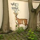 In the wild by brilightning