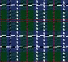 00233 Roxburgh District Tartan Fabric Print Iphone Case by Detnecs2013
