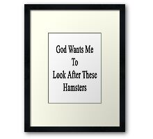 God Wants Me To Look After These Hamsters Framed Print