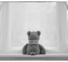 Teddy Bear Waiting by Natalie Kinnear