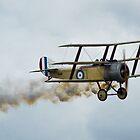 Great War Display Team - RAF Cosford Air Show 2012 by Blitzer