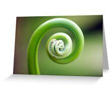 Spirals - fern frond Greeting Card