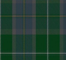 00277 Scottish Borderland Tartan Fabric Print Iphone Case by Detnecs2013
