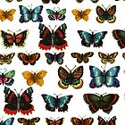 Offset Butterfly Collection by RedPine
