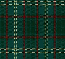 00300 Armagh County Tartan Fabric Print Iphone Case by Detnecs2013
