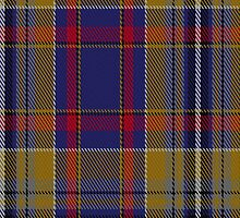 00308 Clare County Crest Range Tartan Fabric Print Iphone Case by Detnecs2013
