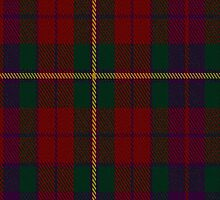 00309 Clare County Tartan Fabric Print Iphone Case by Detnecs2013