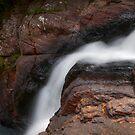Bakers Fall V. Horton Plains National Park. Sri Lanka by JennyRainbow