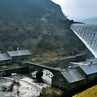 Elan Valley Reservoirs  by Simon Pattinson